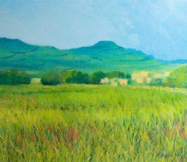 Burmarrad Fields
