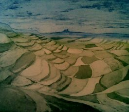 Gozo Terraced Fields