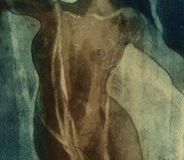 Velied Nude